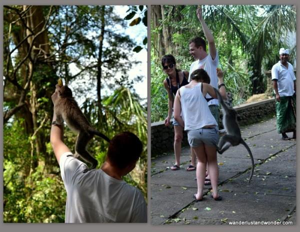 Monkey Forest Ubud, wanderlustandwonder.com