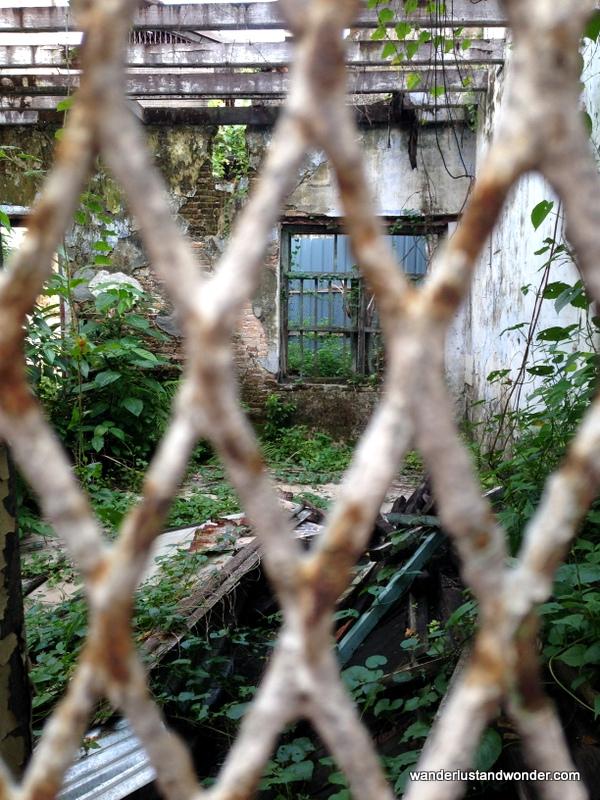 Secret Gardens abound in Old Town Ipoh.